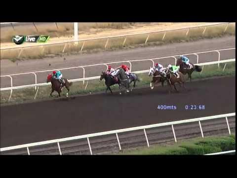 Vidéo de la course PMU PREMIO DEEP BLUE