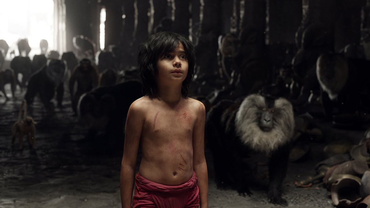 HUMAN a film by Yann ArthusBertrand
