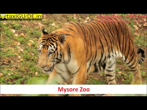 Bangalore to Mysore One Day Sightseeing Tour Package from taxiGUIDE HD