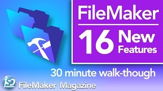 Filemaker Pro Container Fields