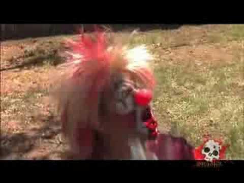 steve o clown
