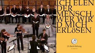 J.S. Bach - Cantata BWV 48 - Ich elender Mensch - 6 - Aria (J. S. Bach Foundation)