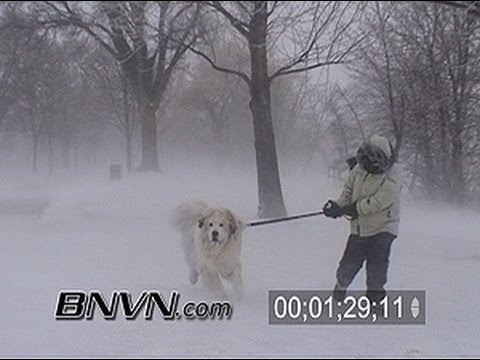 3/9/2002 Ground Blizzard Stock Video