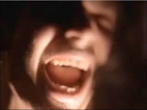 SOUNDGARDEN - Room A Thousand Years Wide (Music Video)