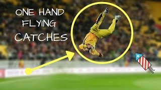 Best Catches in Cricket history by one hand //Royal Sports