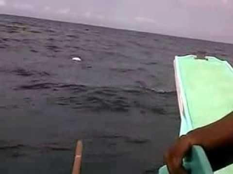 Dead Body Floating On Water due to typhoon Haiyan(Yolanda)