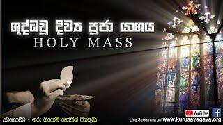 Morning Holy Mass - 09/11/2020