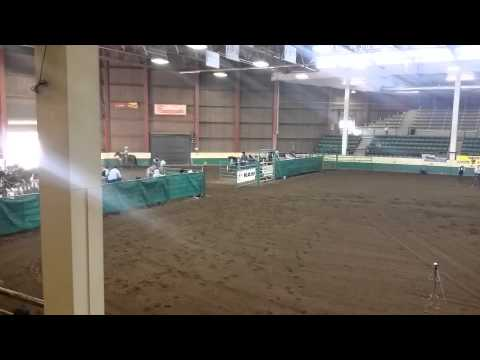 Ft. COLLINS COLLEGE RODEO