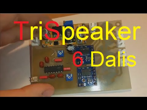 Project TriSpeaker (6 dalis: Class D)