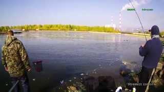 фидер бери  реке обучающее видео