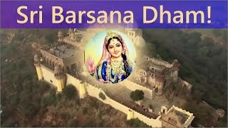 Joy of Krishna Consciousness 015 - Sri Barsana Dham! Bhajan by Tarana Chaitanya Das