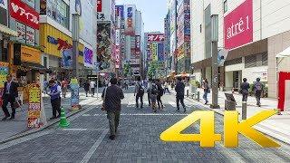 Walking around Akihabara - ??? - 4K Ultra HD