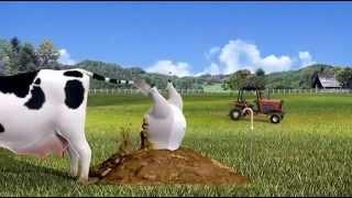Phim Hoạt Hình Chú Gấu Béo Ngốc Nghếch Vui Nhộn 6