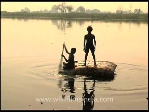 Rag picker children scour the Yamuna riverbed for booty
