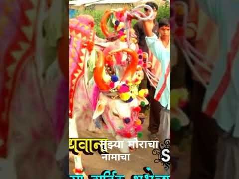 Bailpola Status | बैलपोळा | Anandghan & Hridaynath Mangeshkar | Pola Full screen Status