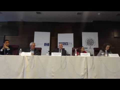 2014 Bosnia and Herzegovina (general) - post-election press conference