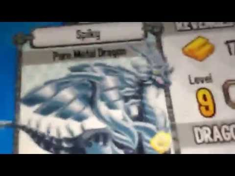 Dragon city. New 4 elements dragon stadium bate and dragon reviews