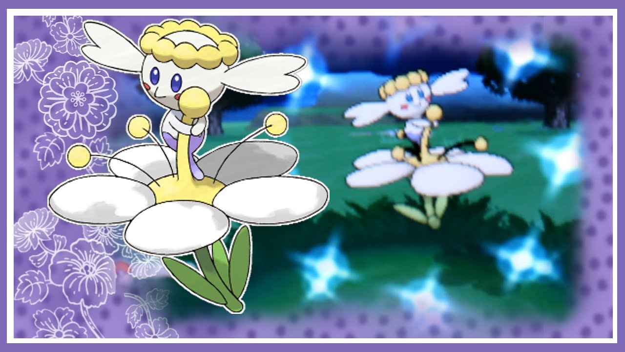 Shiny White Flabebe Shiny White Flabebe After Only