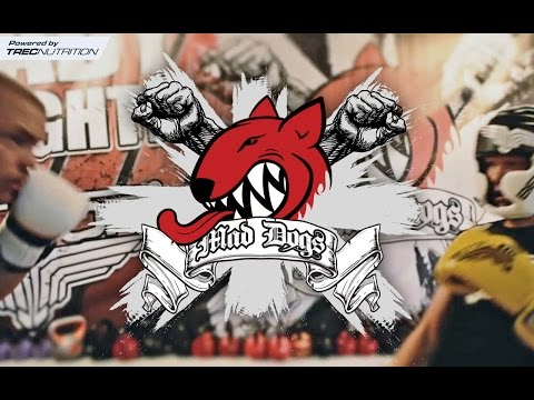 MMA Fight Club Gdynia MAD DOGS Promo