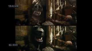 The Hobbit: The Desolation of Smaug Trailer vs Theatrical release/Blu-ray comparison