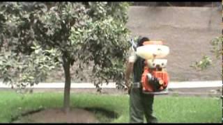 Fumigación de árboles frutales - Peru