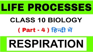 respiration class 10 in hindi