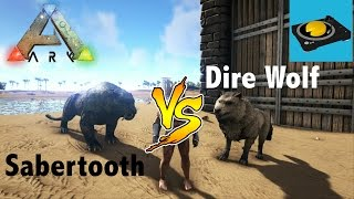 ARK INSIGHT!!! -- Sabertooth V.S Dire Wolf!!