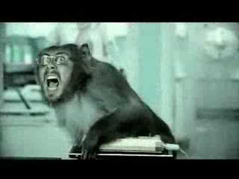 Basement Jaxx-Where's your head at