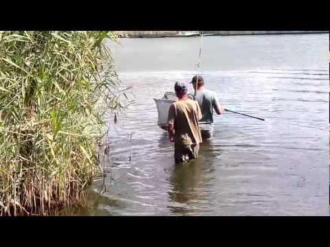 рыбалка в днепропетровской области в марте видео