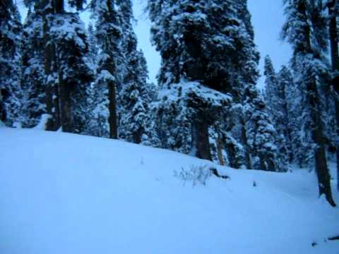 Snow in Kashmir : Gulmarg is Covered With Snow - India Travel & Tours Video