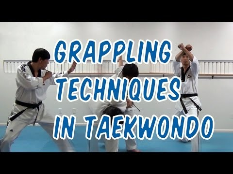 Grappling Techniques in Taekwondo Image 1