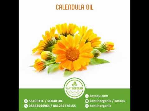 Jual Calendula Oil, Minyak Calendula - 08563544964/081232776155