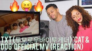 TXT (투모로우바이투게더) 'Cat & Dog' Official MV  (reaction)