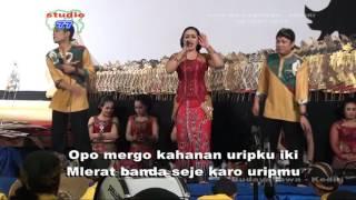 Cidro - Elis - music by Kusuma Wardani