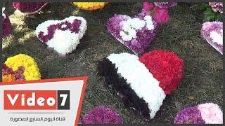 """وائل يهدى مصر بوكيه ورد بألوان العلم فى عيد الأم: """"بحبها أوى"""""""