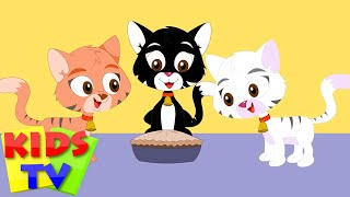 Kids TV Nursery Rhymes - Three Little Kittens | Popular nursery rhyme for kids | kids songs