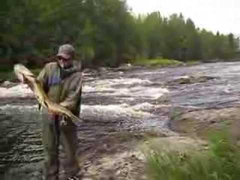 рыбалка в карелии на озере верхнее куйто