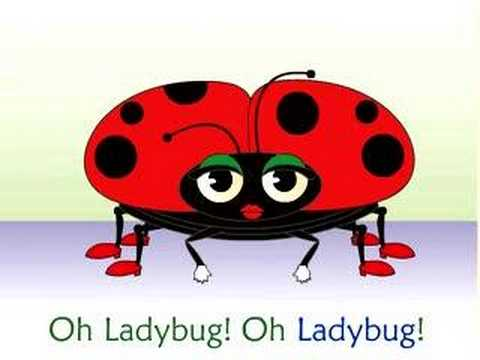 Frank Leto's Ladybug Ladybug Song