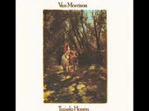 Van Morrison - Like A Cannonball
