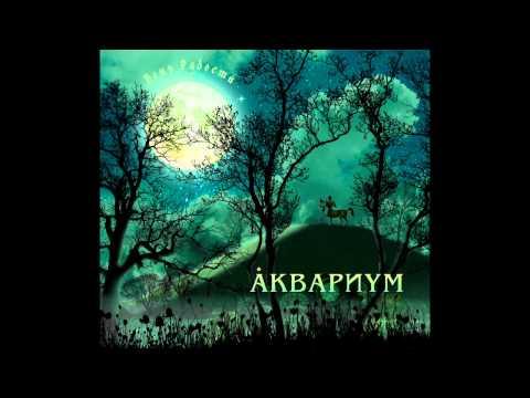 Аквариум, Борис Гребенщиков - С той стороны зеркального стекла