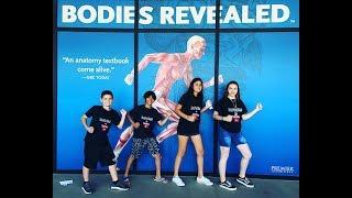 Homeschool Field Trip | Science | Bodies Revealed