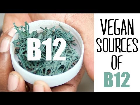 Sources of Vitamin B12 and B12 Supplements for a Vegan Diet | Fablunch