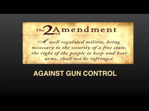 outline for persuasive speech on gun control