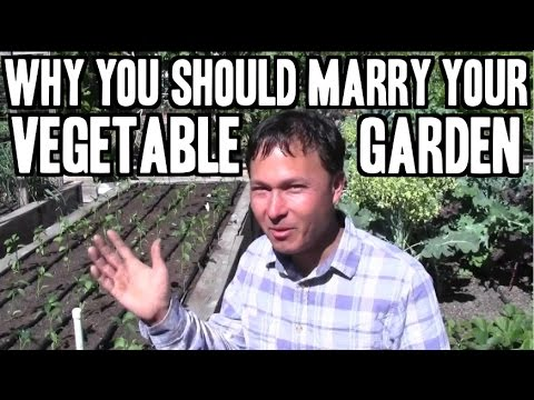 Why You Should Be Married to Your Vegetable Garden