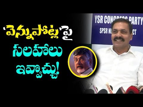 Kakani Govardhan Reddy Advice To CM Chandrababu Over Backstab | AP Political News | IndionTvNews