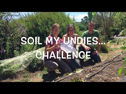 Soil My Undies Challenge: Measuring Soil Biology with a Pair of Briefs