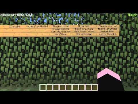 Minecraft Griefing - ScribbleServer