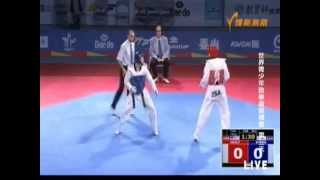 Korea v USA Knockout   Taekwondo News