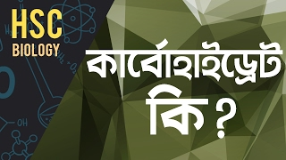 6. What is Carbohydrate? (কার্বোহাইড্রেট কি) [HSC | Admission]