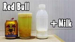 Red Bull + Milk Reaction Experiment
